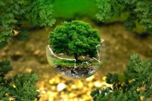 Raport oddziaływania na środowiska
