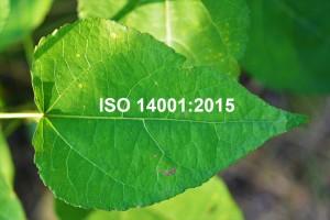 ISO 14001:2015.  System zarządzania środowiskowego. Wymagania i wytyczne stosowania.